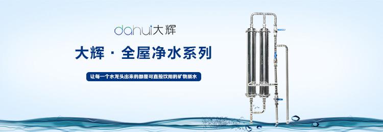 大辉•全屋净水系列
